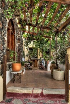 grape-trellis-over-the-patio-in-santorini-greece