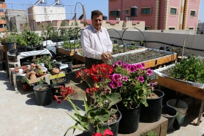 ahmed-saleh-gaza-roof-garden