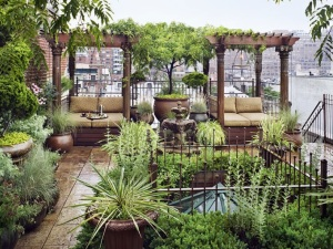 roof-garden-chelsea-close-up