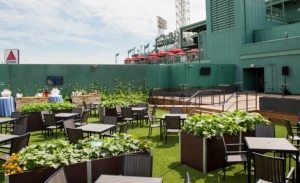 roof-garden-fenway-cafe